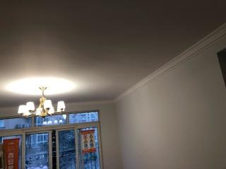 墙、顶面乳胶漆